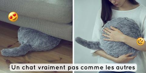 Qoobo, le chat idéal pour ton appartement par...