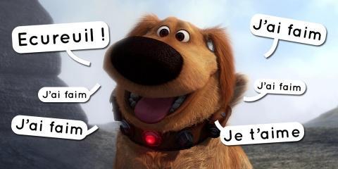 Le traducteur pour chien sera prêt d'ici une...