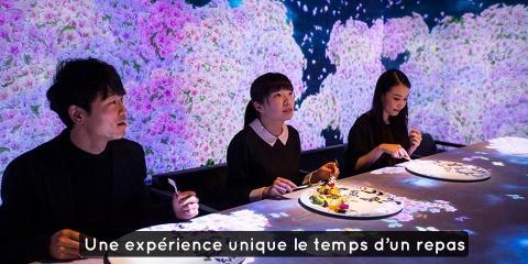 Un restaurant ouvre à Tokyo et offre une expé...