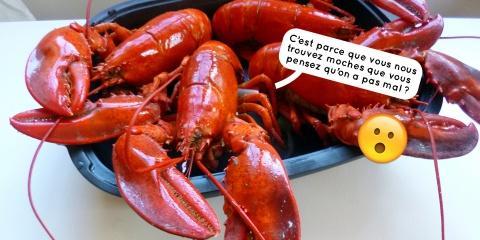 La Suisse interdit de plonger les homards viv...