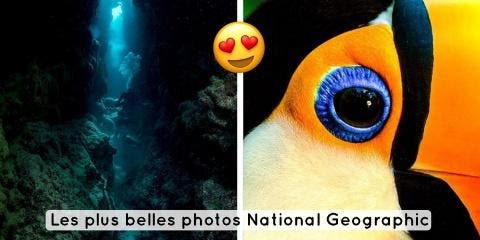 12 photos magnifiques de National Geographic