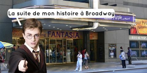 La pièce de théâtre Harry Potter and the Curs...