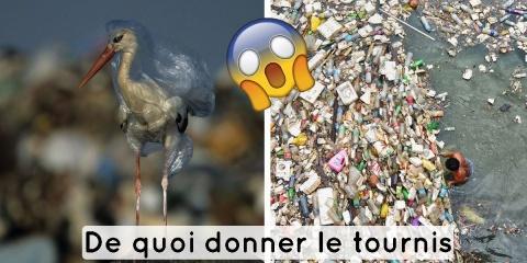 Planète ou plastique ? National Geographic no...