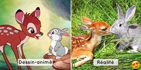 Ces animaux ressemblent beaucoup aux personna...