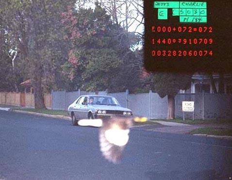 oiseau radar