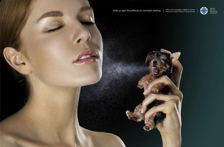 chien parfum