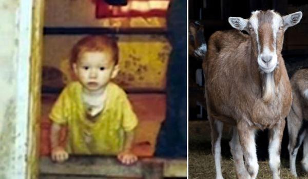 enfants eleves par animaux