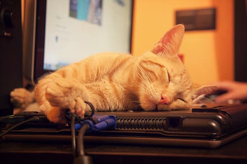 phenomenes etranges pendant sommeil