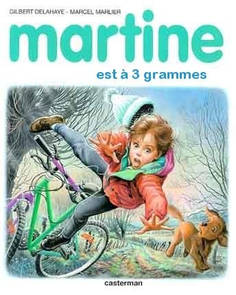 Les Pires Detournements De Martine La Petite Fille A Perdu