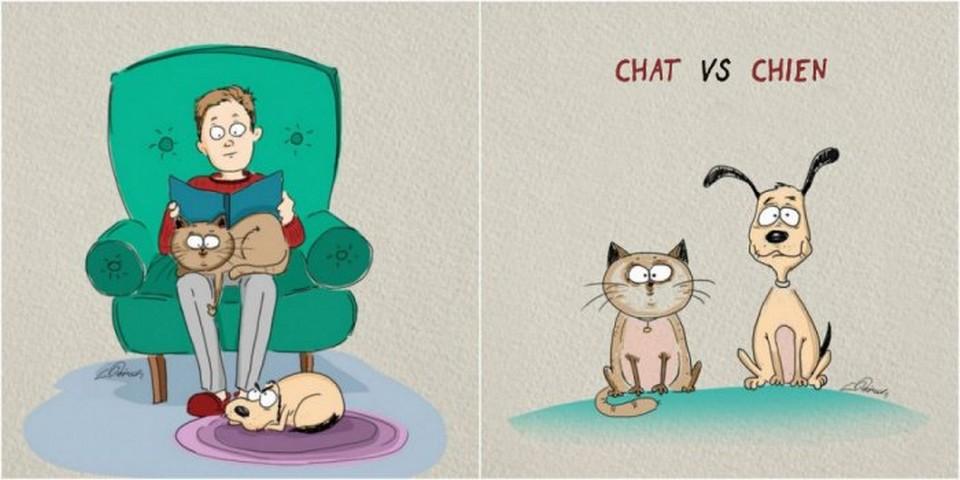 Dessin Humoristique Chien voici la différence entre chiens et chats à travers des dessins