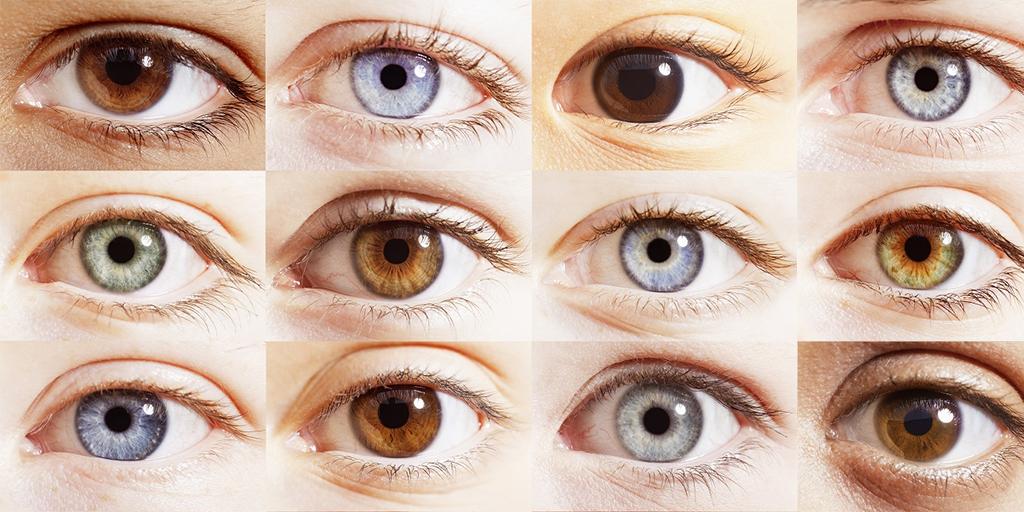 saviez vous que vos yeux n 39 ont pas vraiment de couleur. Black Bedroom Furniture Sets. Home Design Ideas