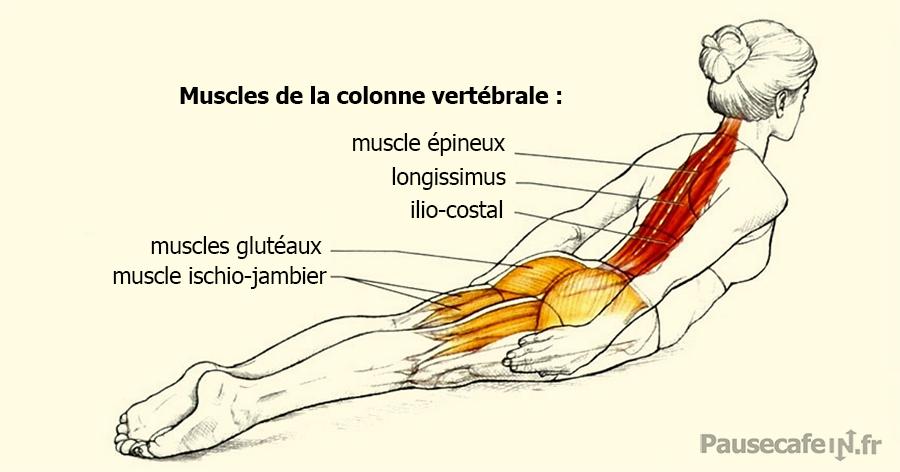 Mal de dos : un exercice rapide pour corriger votre posture sans effort
