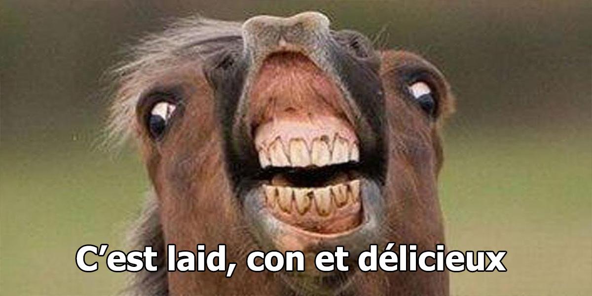 image cheval moche