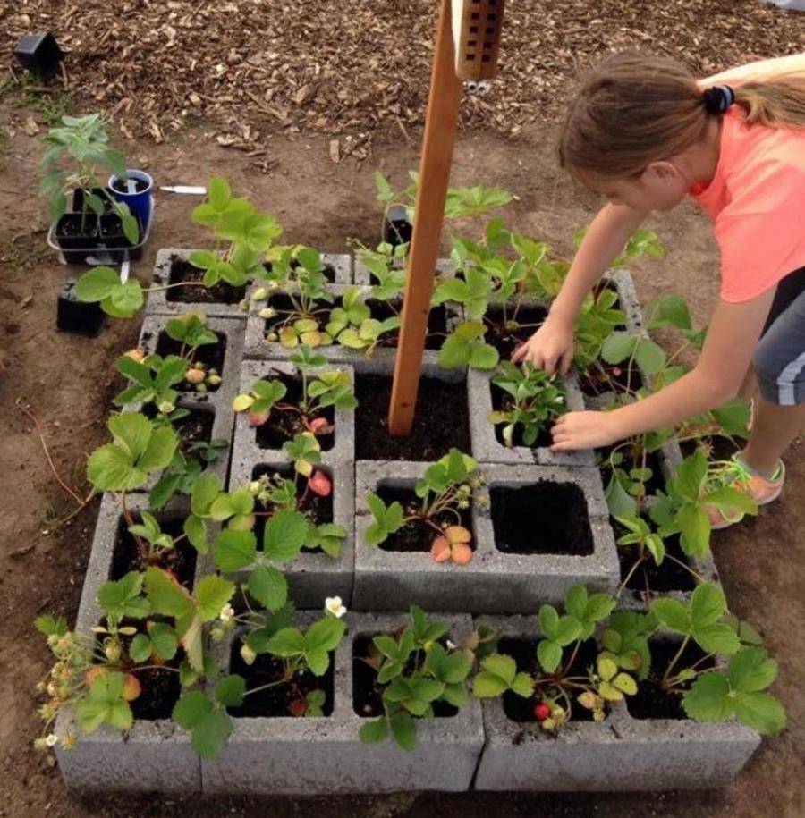 Petit Jardin En Parpaing Diy