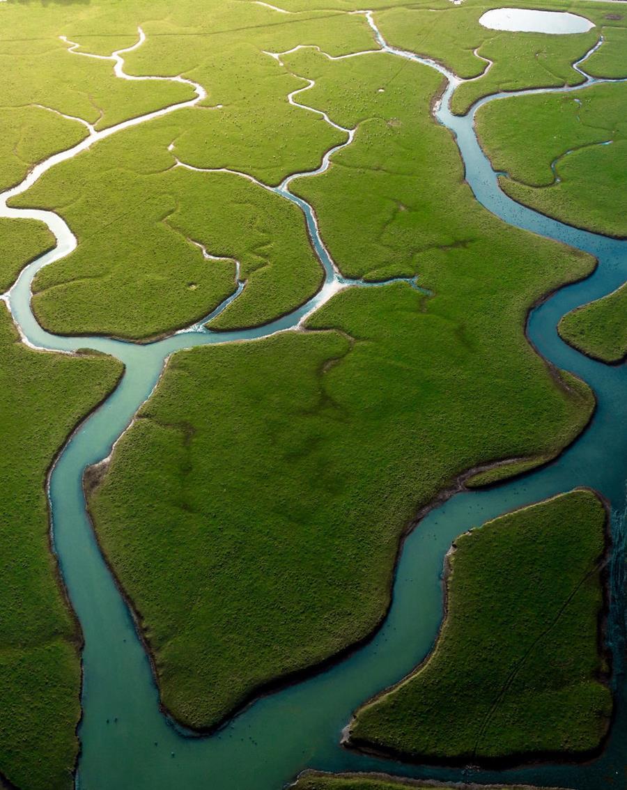 photo, finaliste, agora awards, fleuve