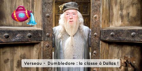 Quel personnage d'Harry Potter êtes vous selo...