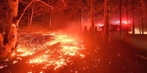 En Australie les incendies ont brûlé l'équiva...