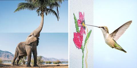 14 photomontages très poétiques par le talent...