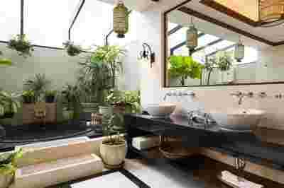 Décoration,intérieur,plantes,vertes,salle,bain,douche