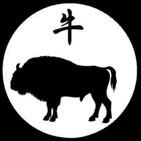 votre signe du zodiaque chinois en dit long sur votre personnalit. Black Bedroom Furniture Sets. Home Design Ideas