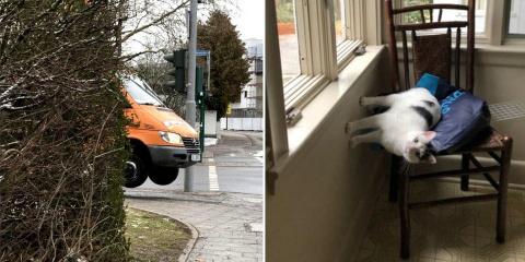 10 photos renversantes qui défient la gravité